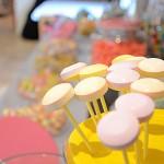 candy-bar-bartavelles